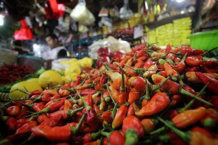 Faktor Cuaca Membuat Cabai Rawit Merah Naik