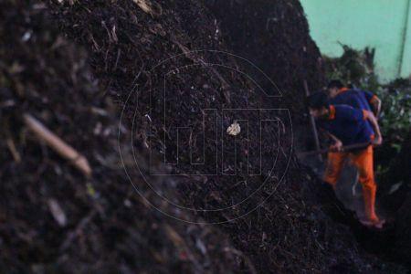 Pengolahan Sampah Organik Alami Peningkatan